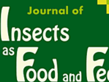 Publication on opportunities for the development of an edible insect food industry in Latin America, Photo: SEPT